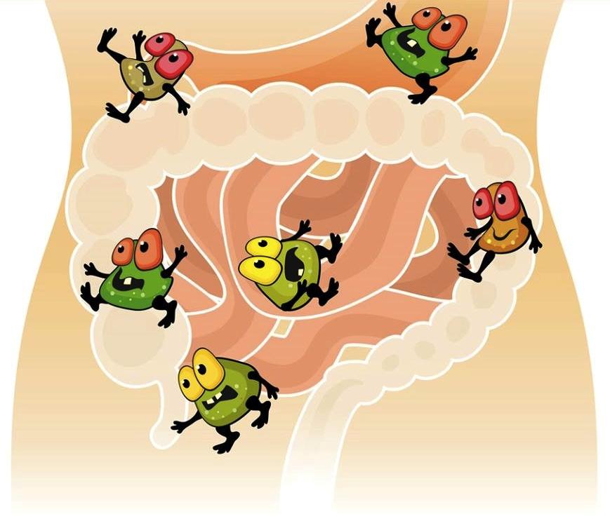 диетолог ксения селезнева рекомендации по питанию