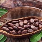 raw-cocoa